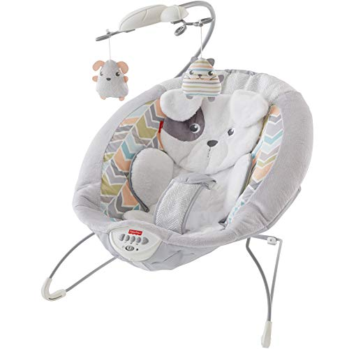 Fisher-Price Sweet Snugapuppy | Deep & extra-cushy seat with soft | Removable mobile with 2 hanging toys | Calming vibrations & 20+ minutes of music | Adjustable 3-point restraint