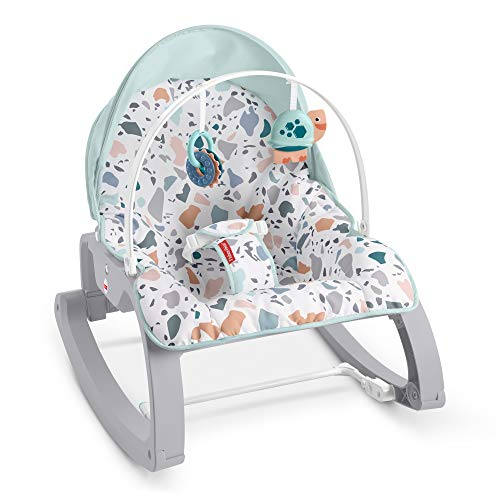 BEST TRAVEL — Fisher-Price Deluxe Infant-to-Toddler Rocker Seat
