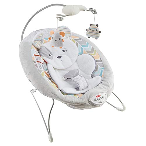 ⭐ BEST CHOICE ⭐ Fisher-Price Sweet Snugapuppy Dreams Deluxe Bouncer