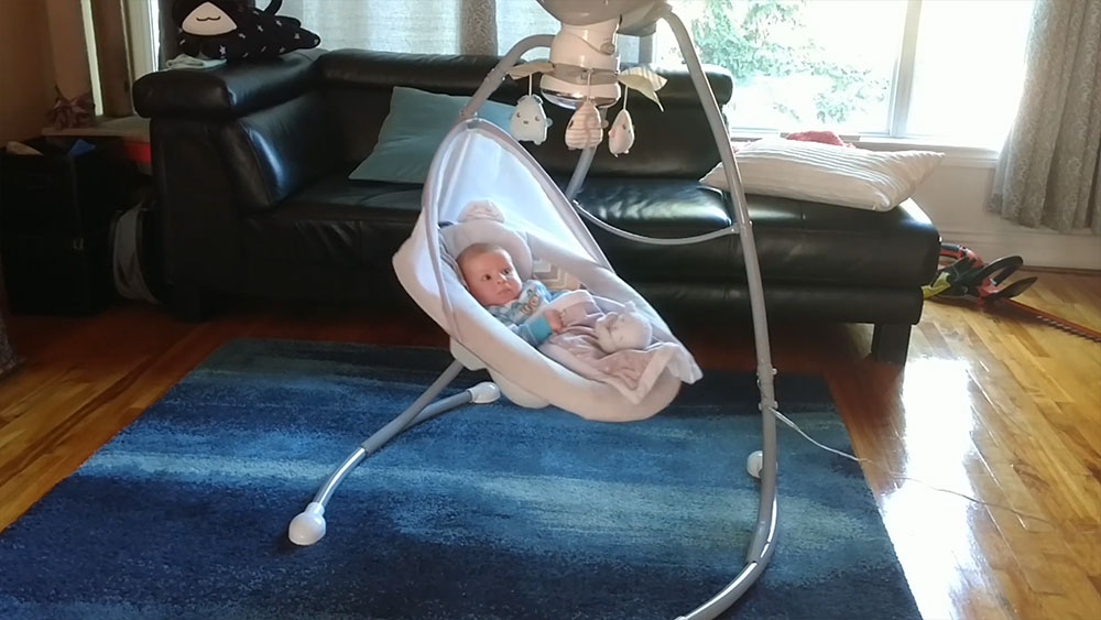 Fisher-Price Top Rated Baby Swings